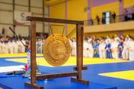 ТУСУР занял первое командное место на Кубке Томской области по дзю-дзюцу