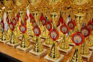 Спортсмены ТУСУРа примут участие в чемпионате СФО по смешанному боевому единоборству