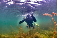 Умный буй: магистранты ТУСУРа учатся разрабатывать проекты на реальном кейсе от клуба аквалангистов
