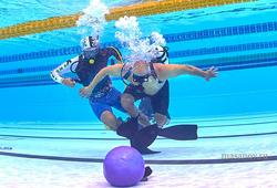 Подводники ТУСУРа обеспечили бесперебойную работу оборудования на чемпионате мира по спортивному дайвингу